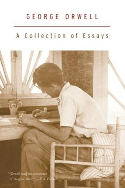 Read A Collection of Essays online